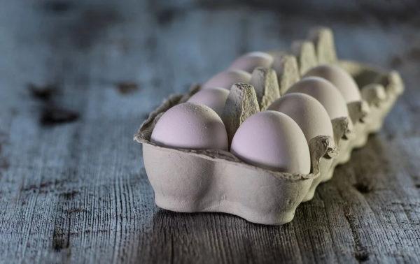 Uova, Conservazione e Prevenzione – I nostri consigli